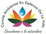 Logo Comite Ambiental Defensa de la Vida 2013
