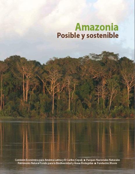 Libro Amazonia Posible 2013