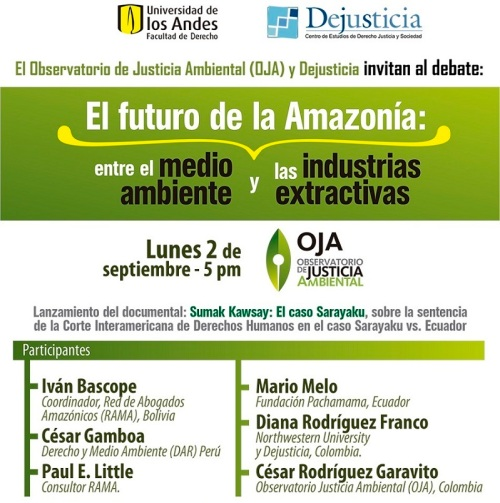 El futuro de la Amazonia entre medio ambiente 2013