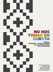 NoNosTomanEnCuenta2013