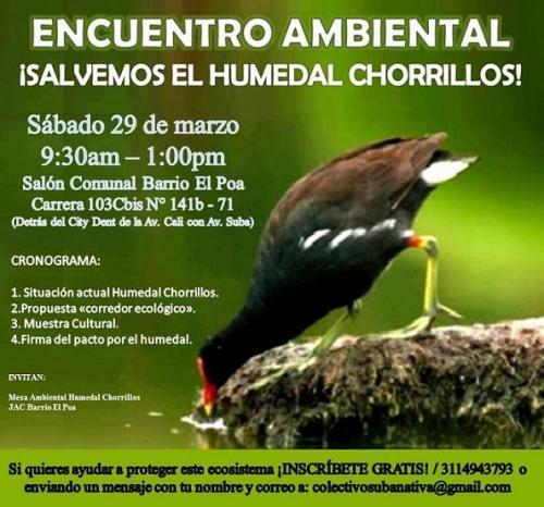 EncuentroHumedalChorrillos.jpg large
