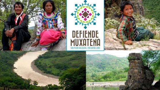 Peticion Muxatena 2014