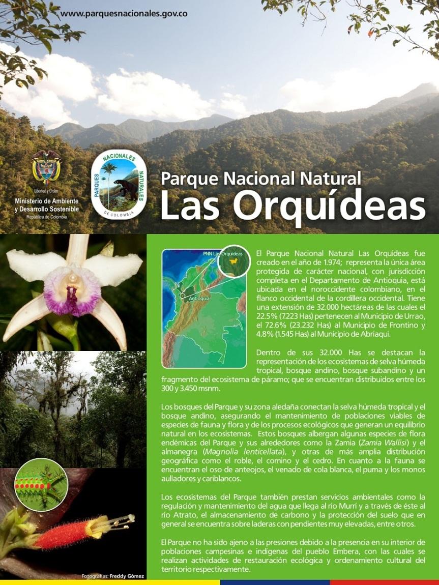 Pendon Parque Nacional  las Orquideas 2014