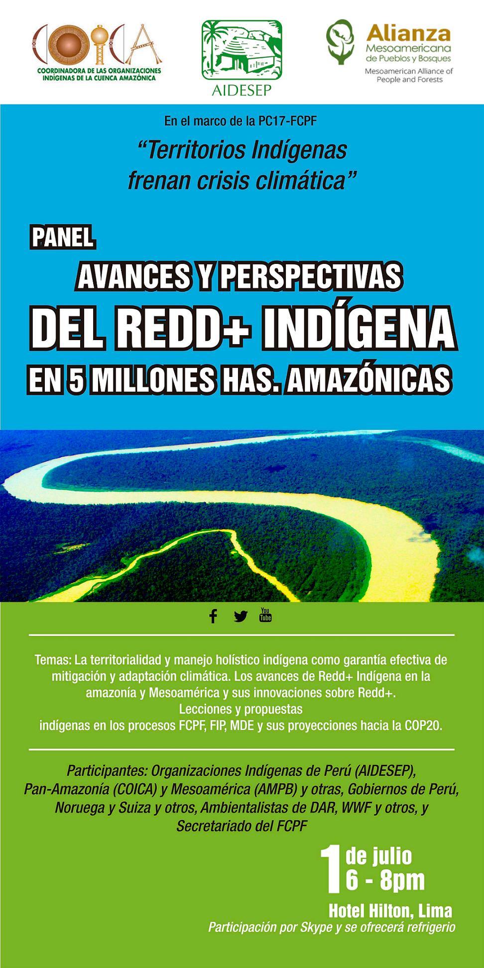 Panel Reddmas indigena 2014