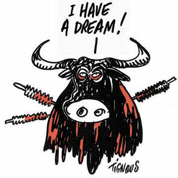 CH-Dream-Tignous