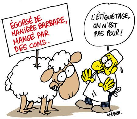 CH-Lamb-by-Charb
