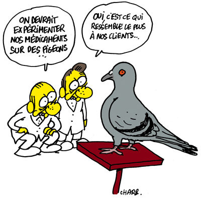 CH-Pigeon-by-Charb