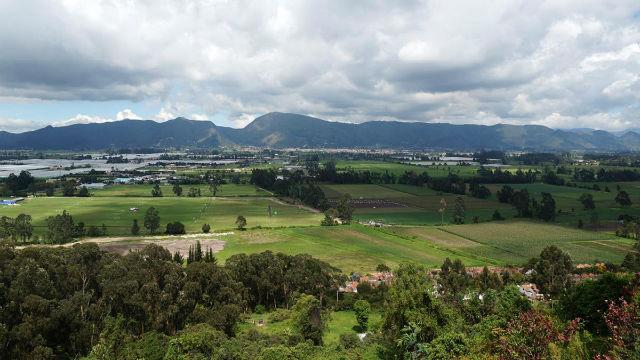Reserva Forestal
