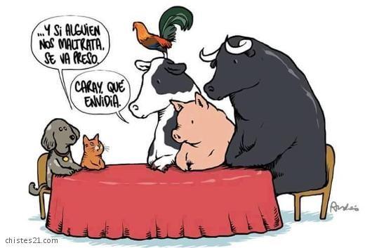 juridico animal 1