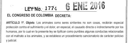 Ley castigo maltrato animal Colombia
