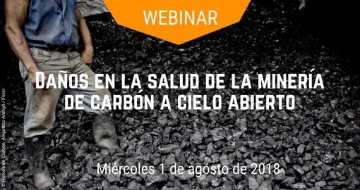 Dialogos sobre la minería de carbón a cielo abierto en America Latina: una mirada desde ladiversidad